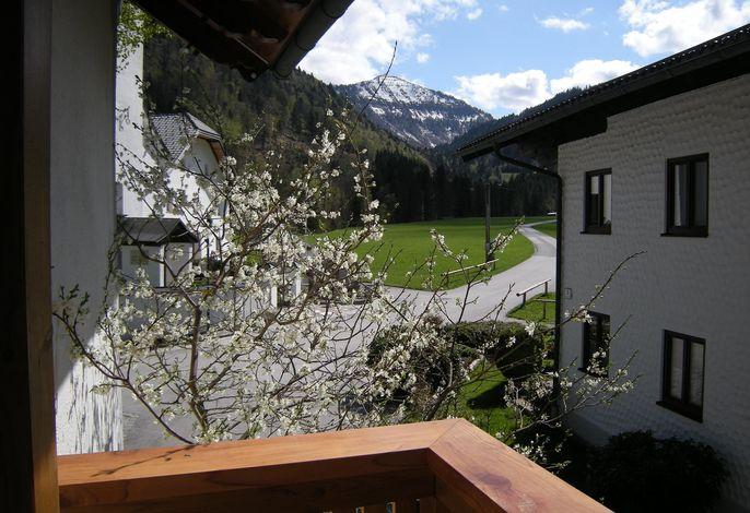 Ferienhaus-Hintersee