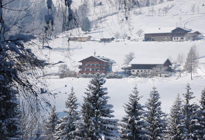 Hocheggerhof