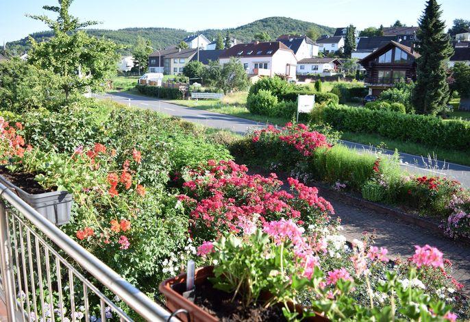 Weingut-Pension Raevenhof