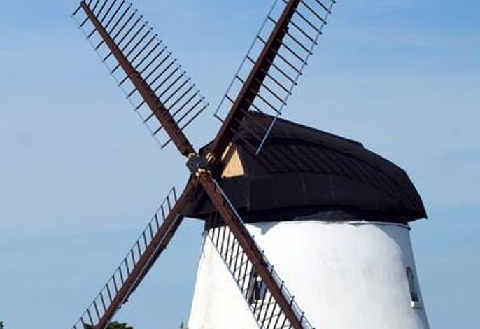 Mühlenurlaub Südheide