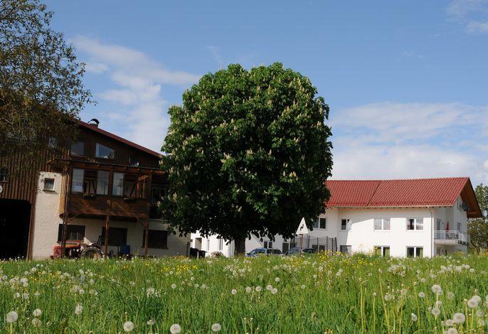 Ferienhof Hopfgärtle Müller