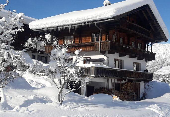 Ferienhaus Larch