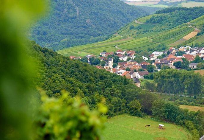 Weingut und Gästehaus Franzmann