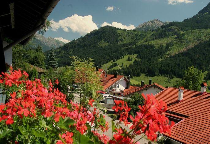 Schwandenhof Ferienwohnungen