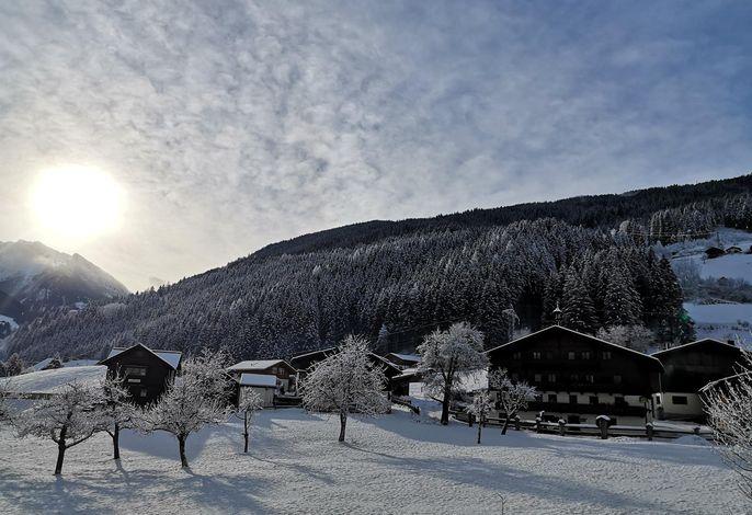 Schweizerhof, Bio-Bauernhof