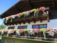 Haus Eva Portenkirchner