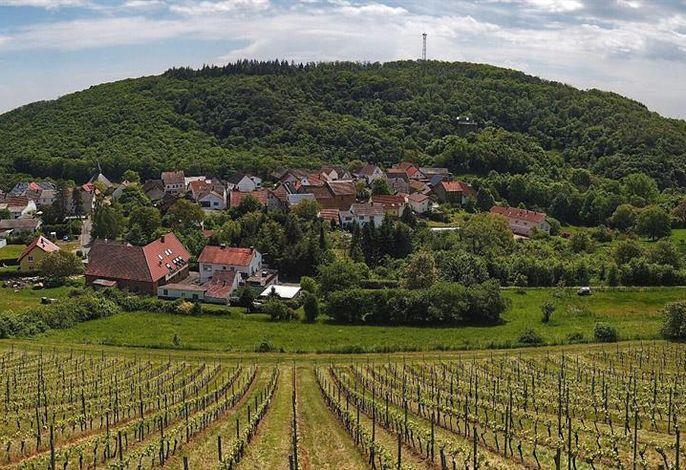 Weingut und Ferienappartement Erbacher Hof