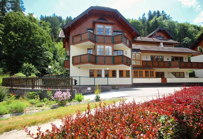 Appartement Berggasse  by Schladming-App.