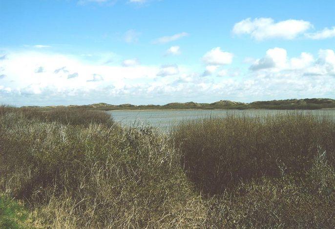 Inselresidenz Wattenmeer, Fewo Freund