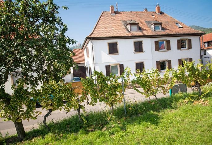 Hambach unterm Schloss