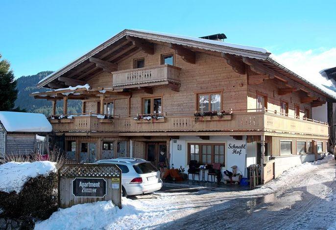 Bauernhof Schnablhof - am Bergdoktorhaus