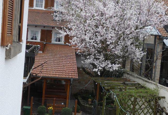 Winzerhaus im Linsenbusch