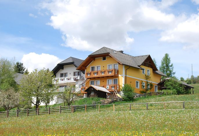 Holzer, Haus