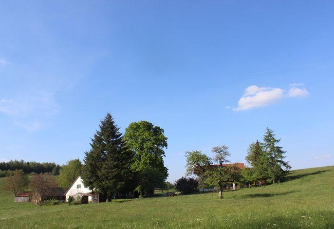 Auszeit auf dem Lindenhof