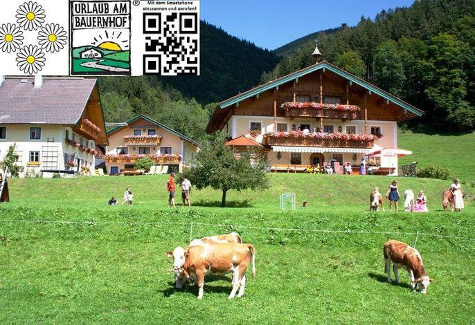 Am Ferienbauernhof Schmiedbauer.com Salzkammergut