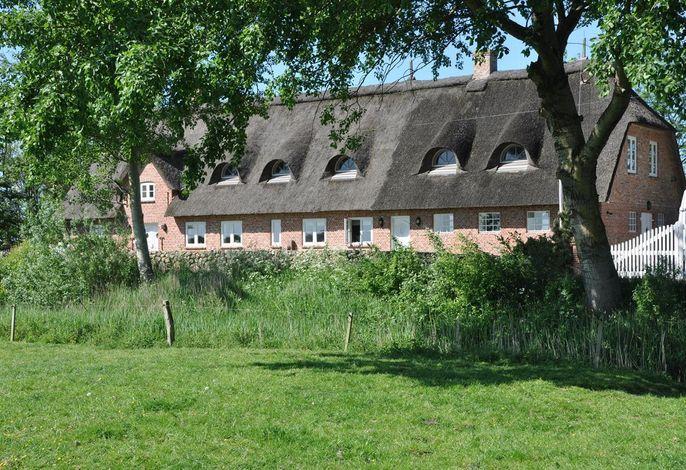 Osterdeich Molehill