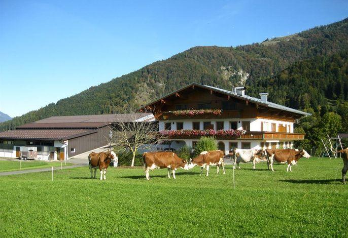 Bauernhof Oberhochstätt - Fam. Schuster