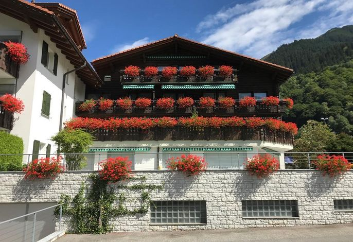 Residenz Raetia Whg Gatschiefer