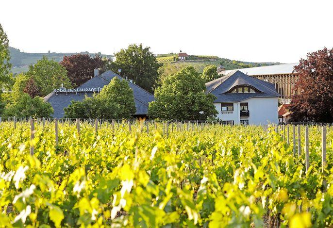 Fronmühle, Hotel-Restaurant