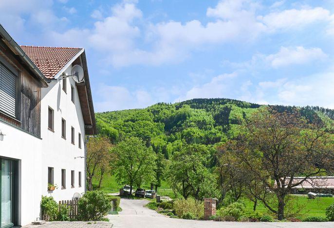 Farmhouse Apartment Scheibbs