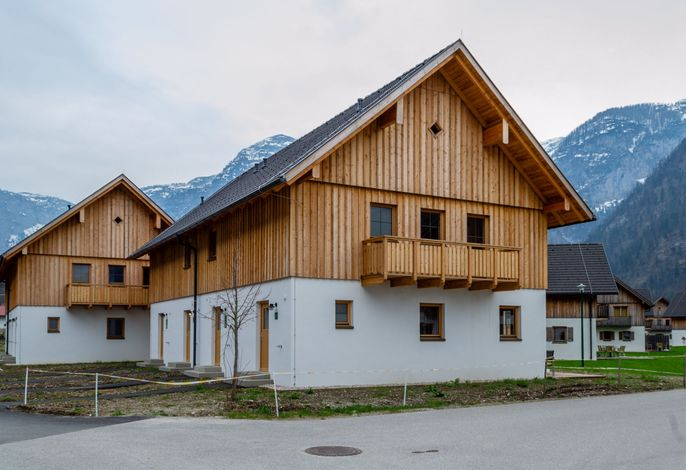 Luxery Salzkammergut Studio Comfort F