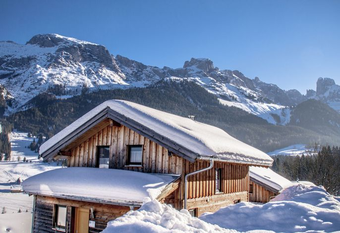 Dachstein Chalet Alpenrose Haustier erlaubt
