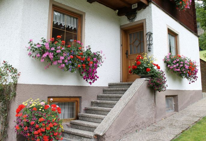 Ferienhaus Dachsteinheim