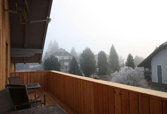 Alpensteinbock Mauterndorf