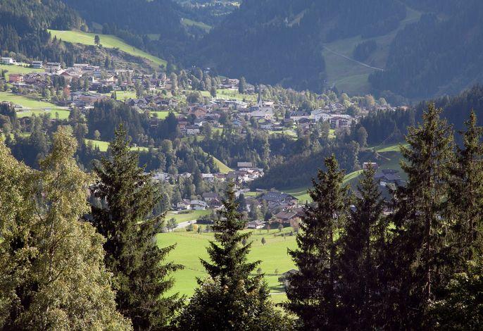 Schüttbach