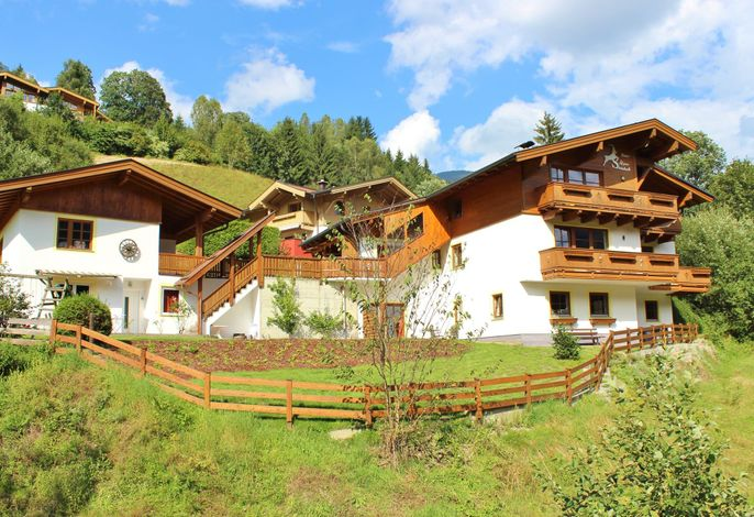 Alpensteinbock Saalbach
