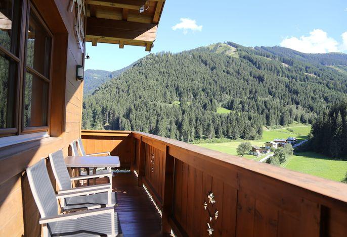 Alpensteinbock Saalbach A