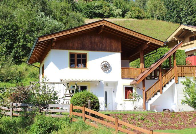Alpensteinbock Saalbach D