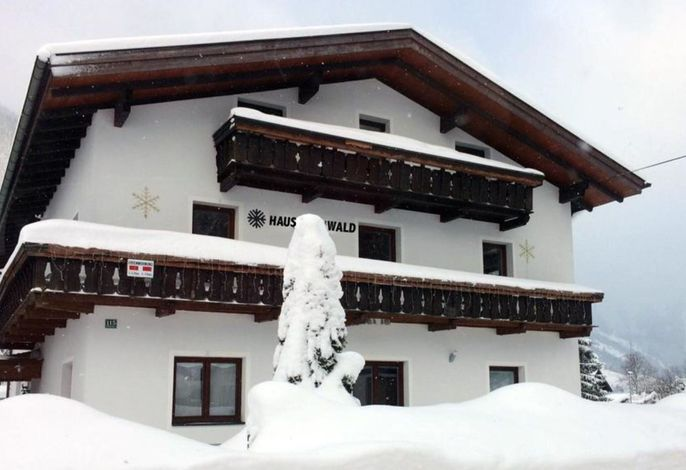 Haus Bergwald TOP 3