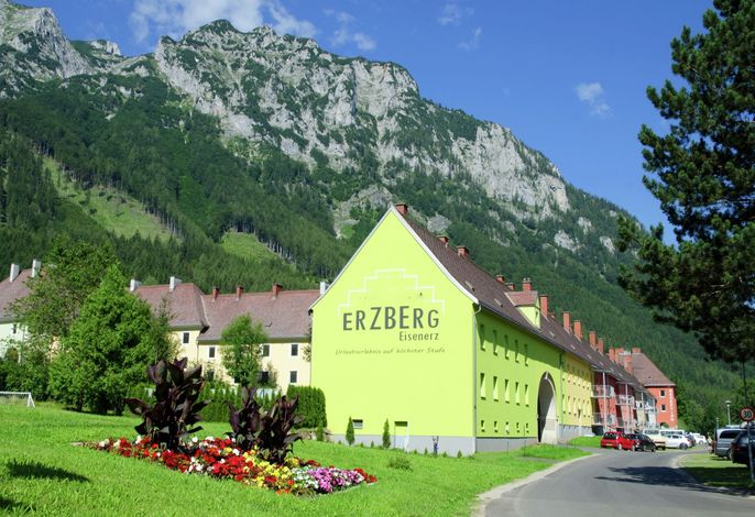 Alpin Apartment Reichenstein mit Whirlwanne
