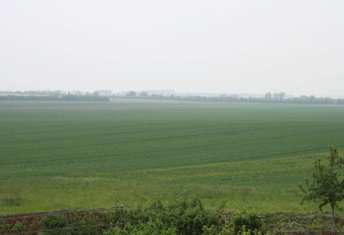 Bauernhof Föhrenherberge
