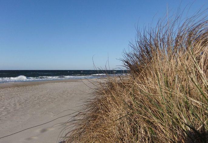 Ferienwohnung Eva mit Meerblick - strandnah