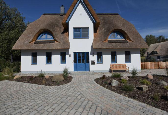Strandhafer - links mit Terrasse Kamin in Rerik