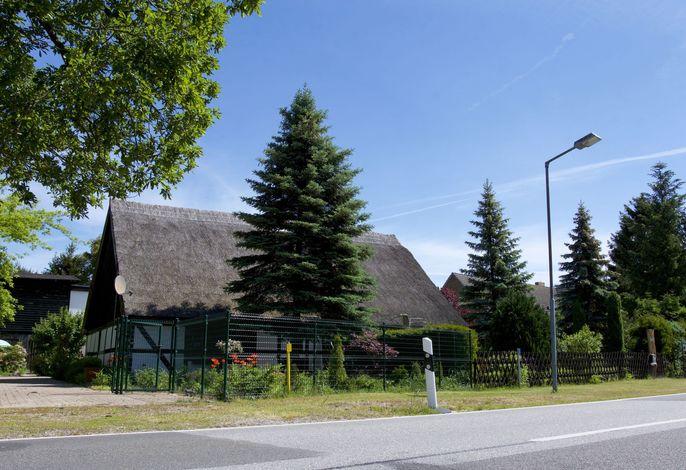Ferienhaus - Ahlbeck am Haff / Nr 1