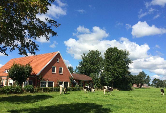 Villa Ostfriesland XL