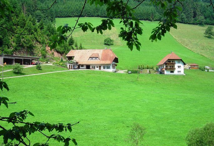 Salmensbach