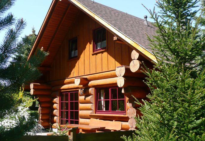 Naturstammhaus