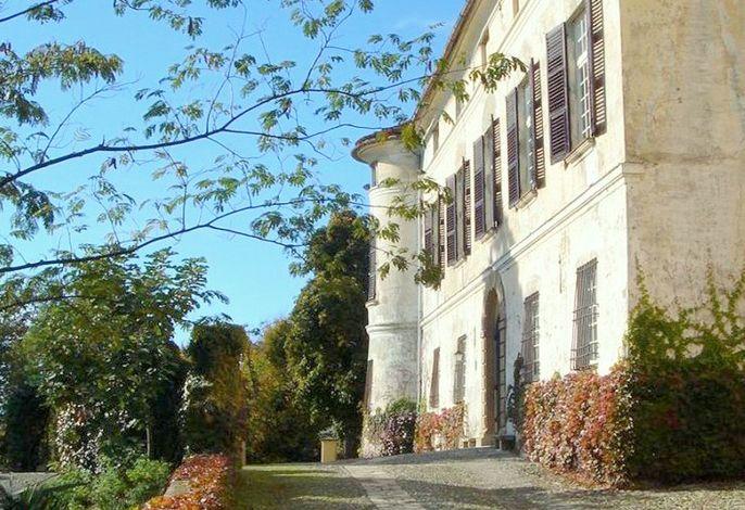 Castello Grimalda - Conchiglie