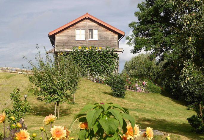 H12 Holz-Ferienhaus Haffblick Russow nahe Ostseebad Rerik im Sommer