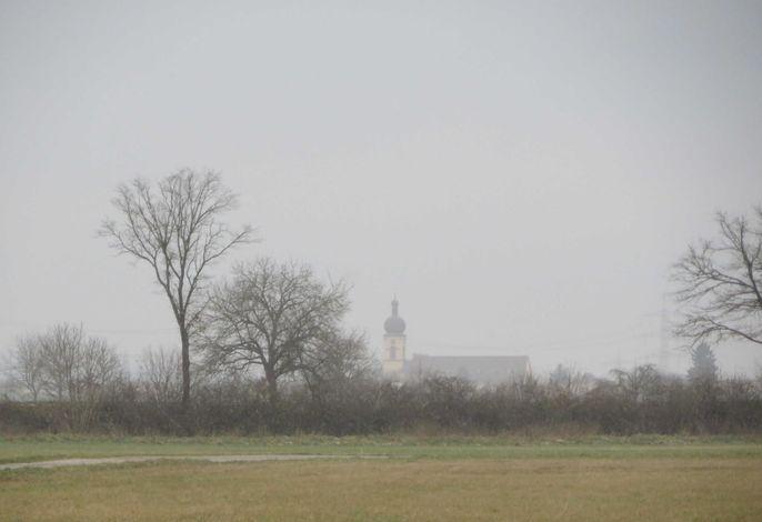 Kappeler Kirche im Morgengrauen vom Taubergießen aus