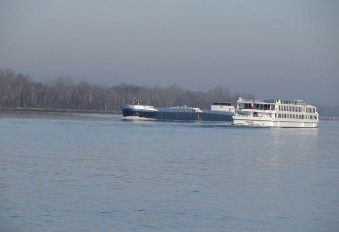 Schiffsverkehr auf dem Rhein bei Kappel