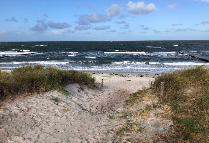 Jetzt neu: Strandwohnungen Zingst direkt am Meer