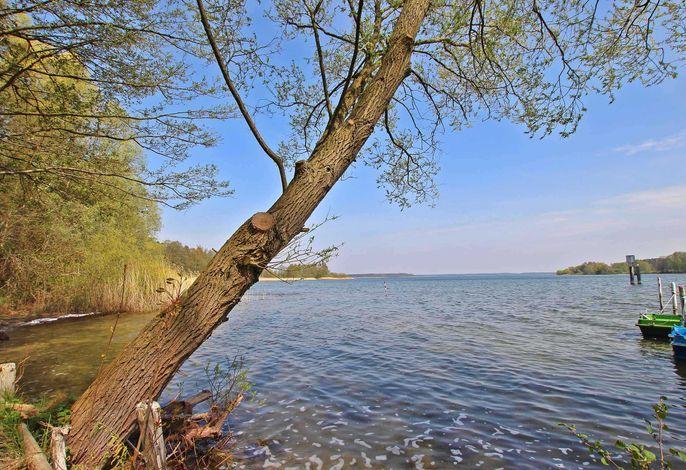 Ferienwohnung Malchow SEE 4902