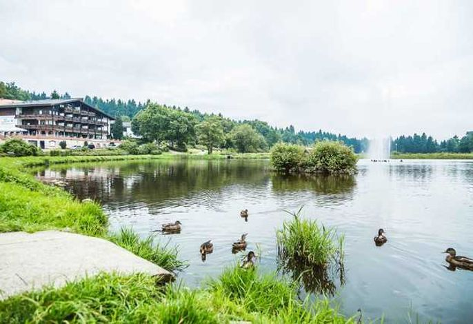 Haus am See Harzflair