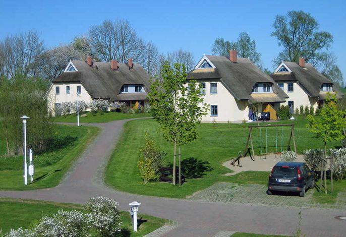 4-Sterne Reetdachhaus Hasel 1 mit Sauna und Kamin