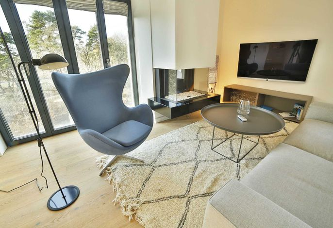 Wohnraum mit Sky TV und Kamin
